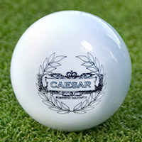 Ceasar Dimpleless Golf Ball
