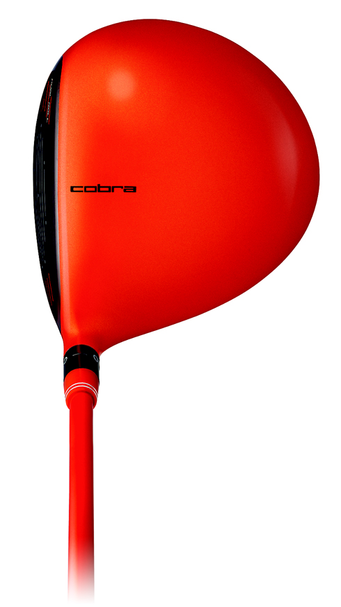 Cobra Amp Orange Crown