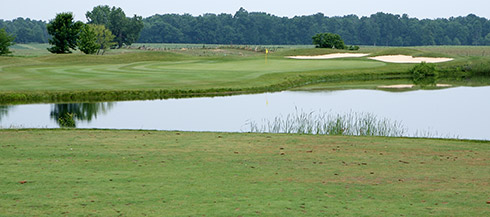 Darby Creek 11 Tee