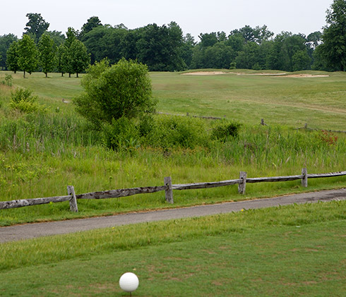 Darby Creek 17 Tee