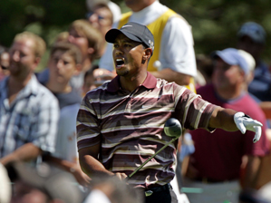 Tiger Woods Fore Left!!!