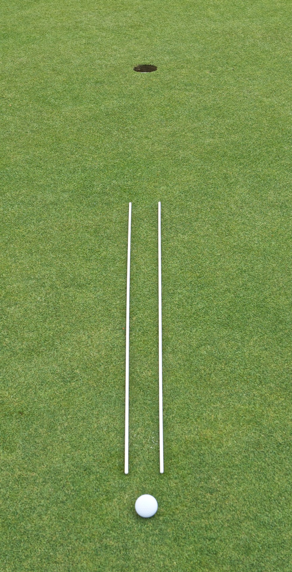Swinkey Line Sticks