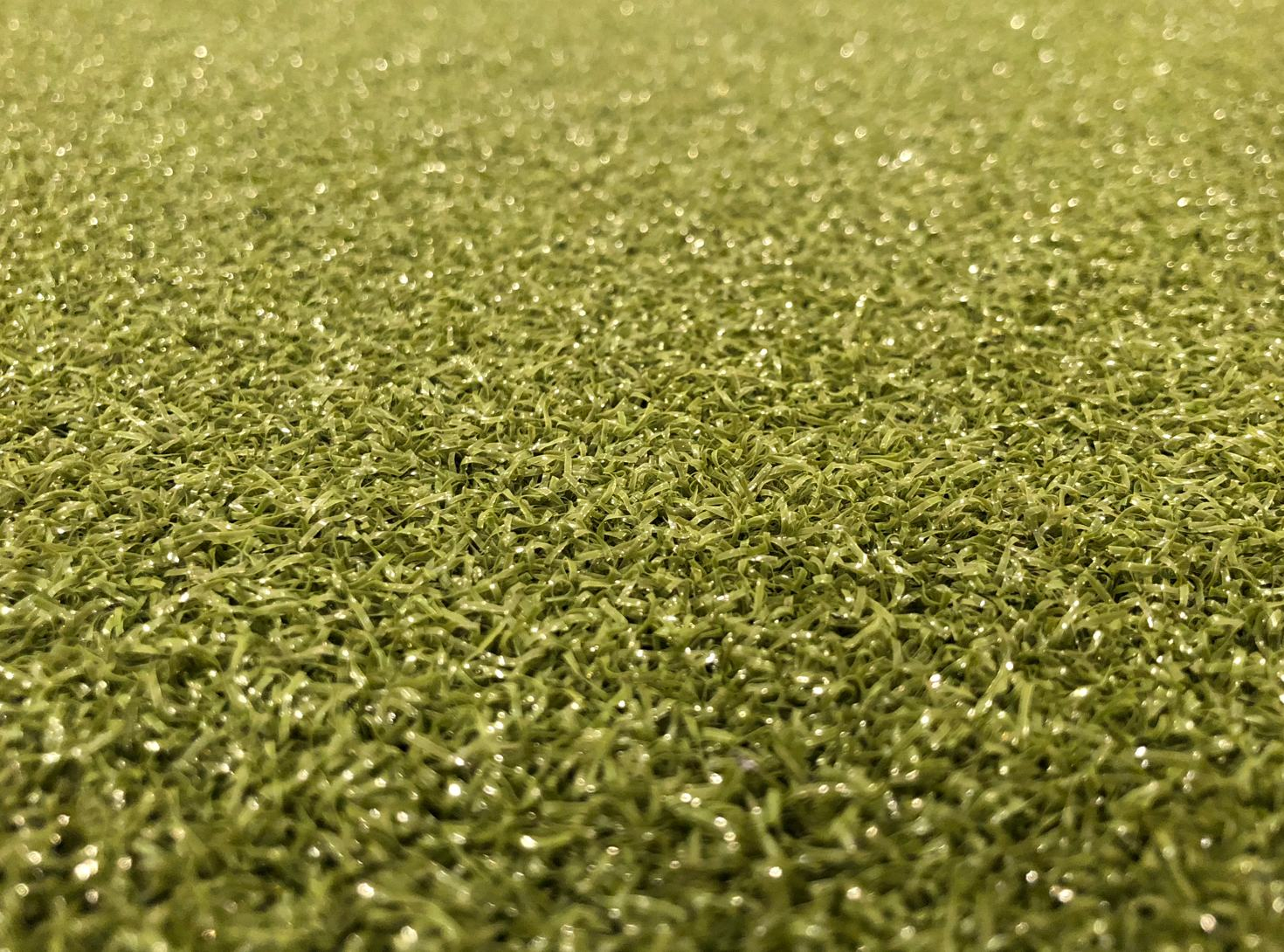 SynLawn Closeup