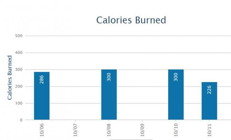 Calories_Burned.thumb.JPG.84cfb71d992c3e