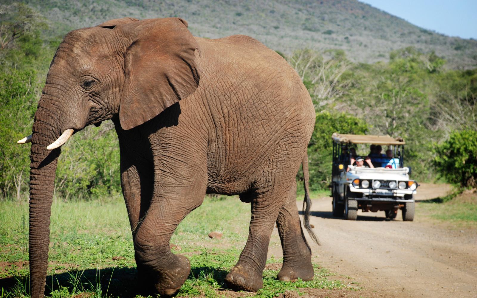 HluHluwe game Safari