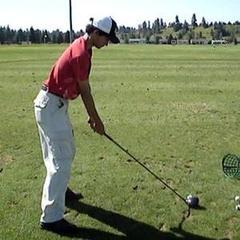 Golfnutgalen
