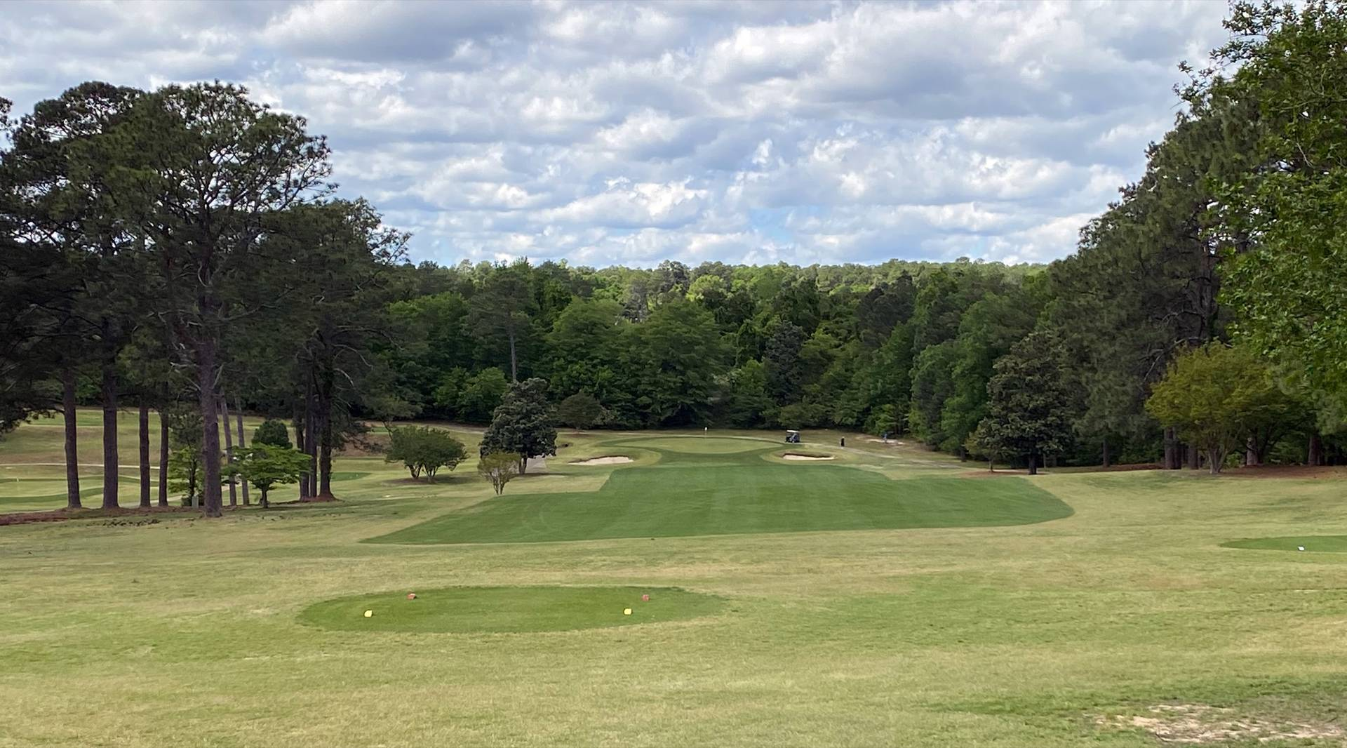 Southern Pines #1