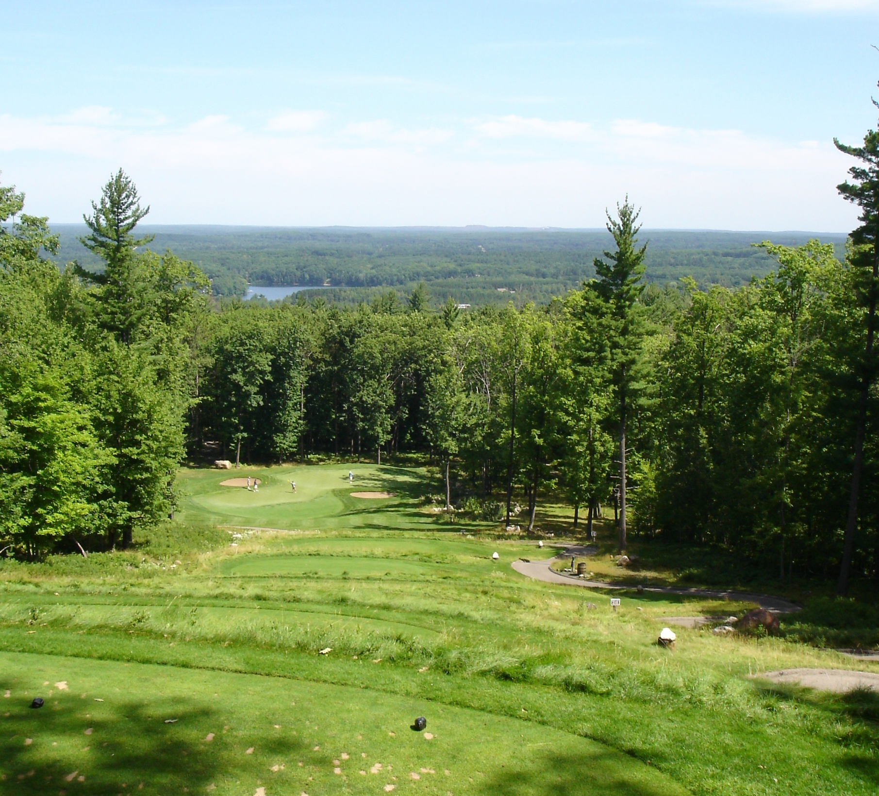 17th at Timberstone, Iron Mtn, MI.  One of the top 20 courses in the country.  Look closely, - the green mirrors the shape of the lake in the background.