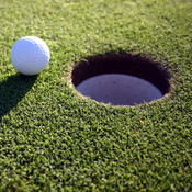 GolfHippy