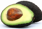 AvocadoWillie