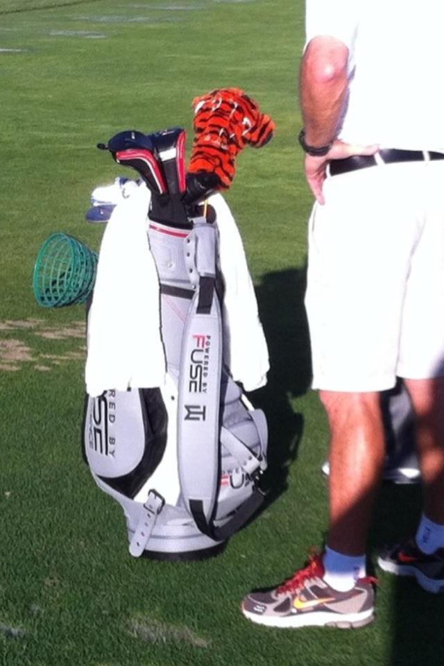 Tiger's New Bag 2011.jpg