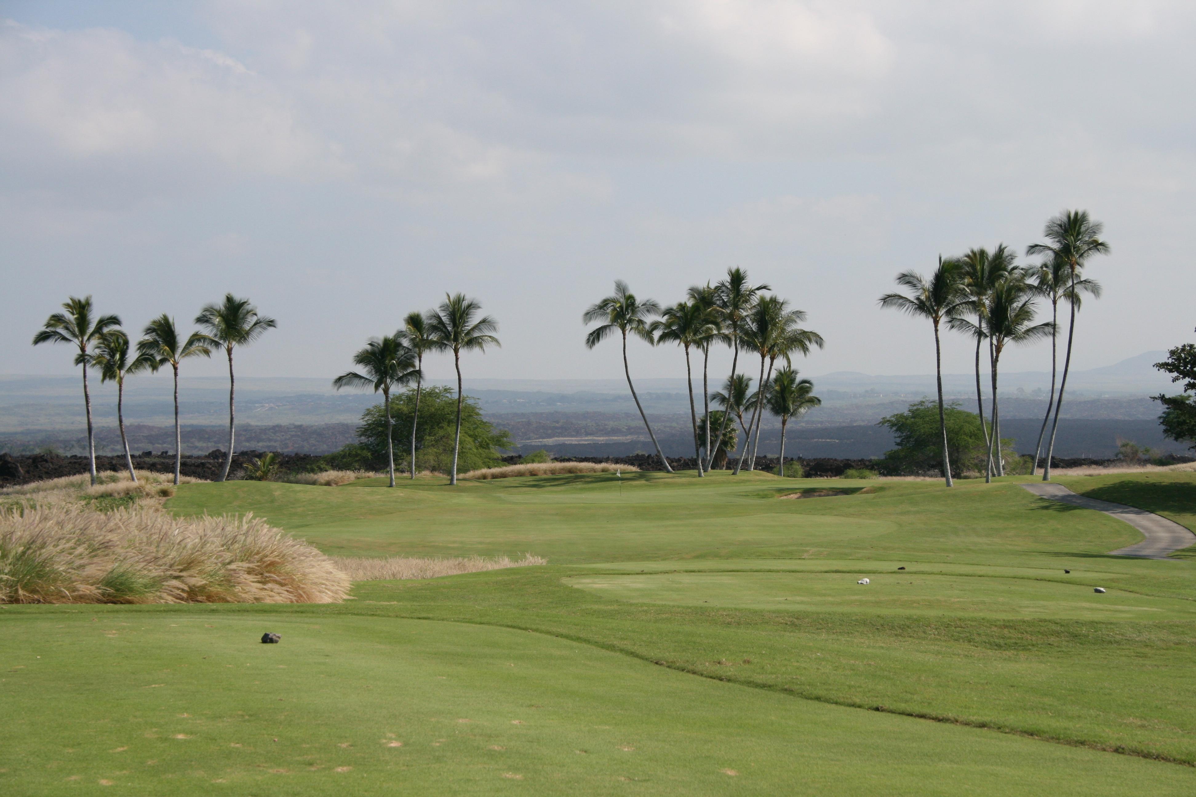 Hawaii 1 238.jpg