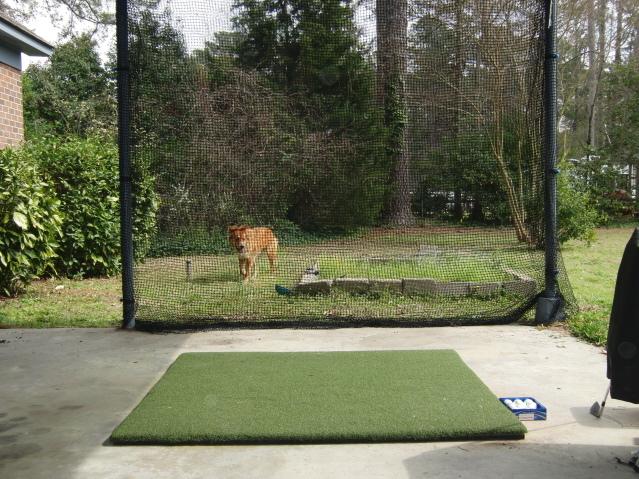 DIY Golf net: anyone else built one