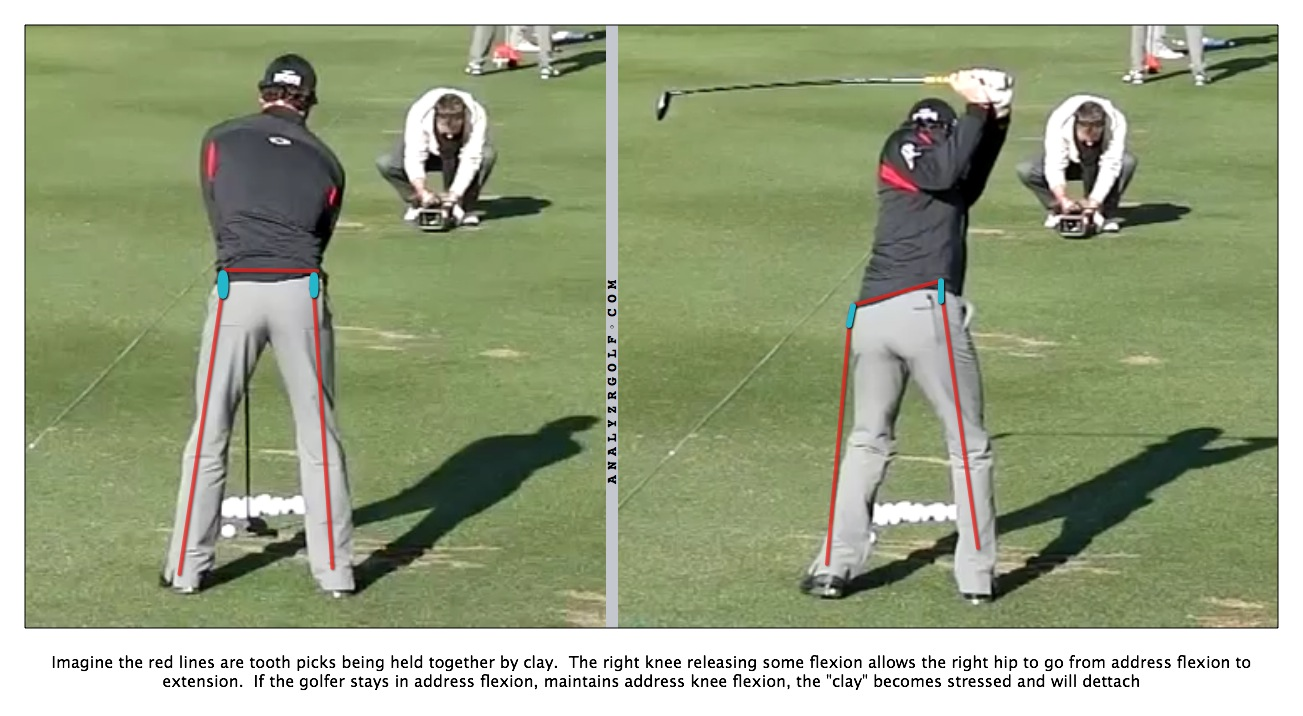 Rory A1-4 Posterior.jpg